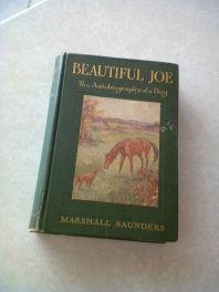 Book photo, Beautiful Joe